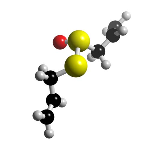 Picture of Allicin 3D model