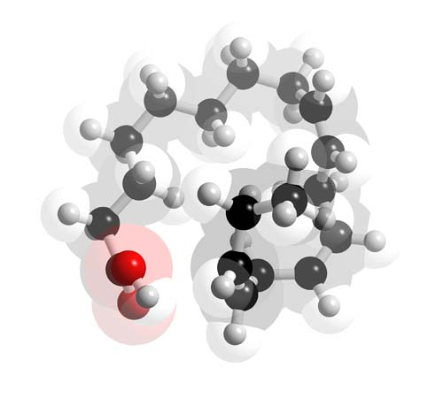 Picture of Alpha-linolenic acid 3D model