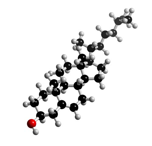 Picture of Cholesterol  3D model