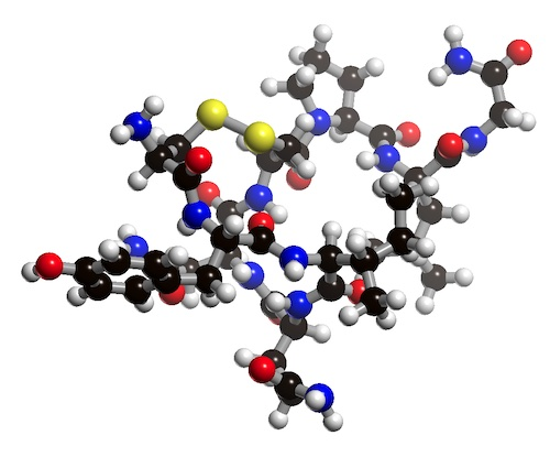 Picture of Oxytocin 3D model