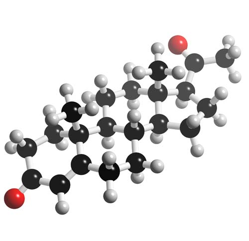 Picture of Progesterone 3D model