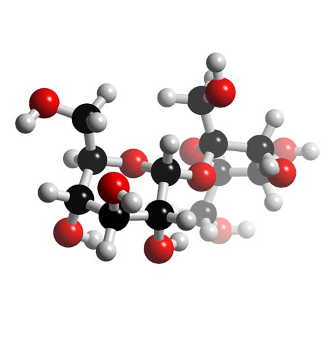 Picture of Sucrose 3D model