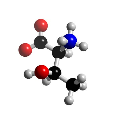 Picture of Threonine 3D model