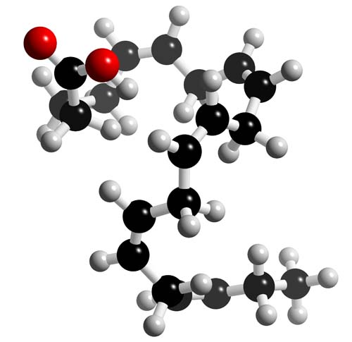 Picture of Eicosapentaenoic acid (EPA) 3D model