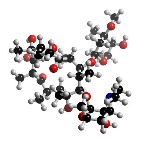 Picture of Erythromycin Ethylsuccinate 3D model