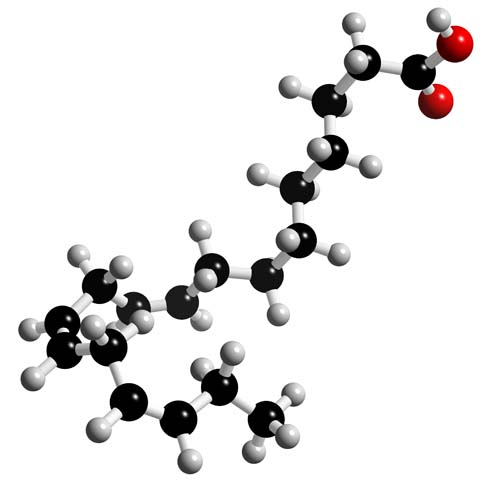 Picture of Linolenic acid (ALA) 3D model