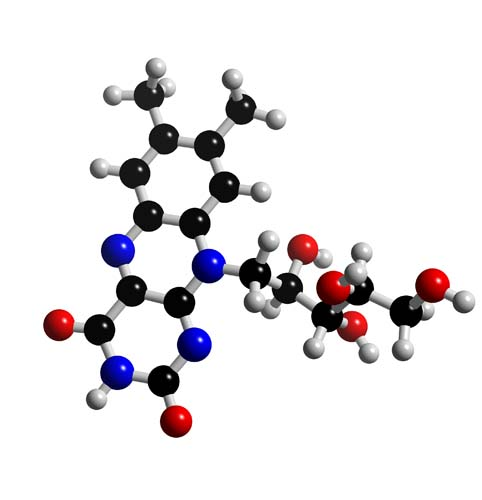 Picture of Vitamin B2 Riboflavin 3D model